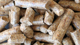 buy in bulk pellets